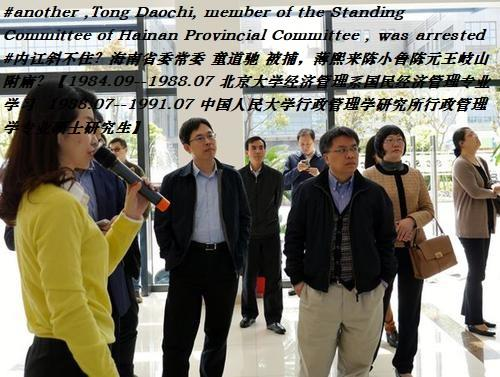#another ,Tong Daochi, member of the Standing Com